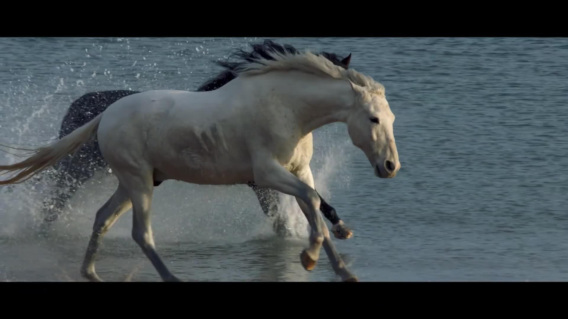 Foals - Neptune