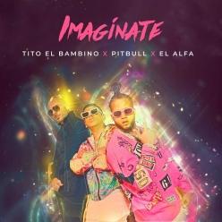 Tito El Bambino, Pitbull & El Alfa - Imaginate