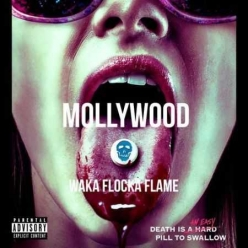Waka Flocka - Mollywood