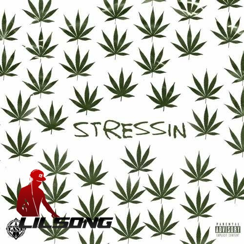 Problem - Stressin