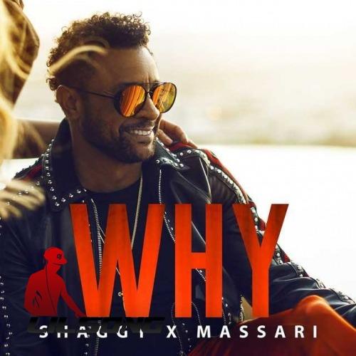 Shaggy & Massari - Why
